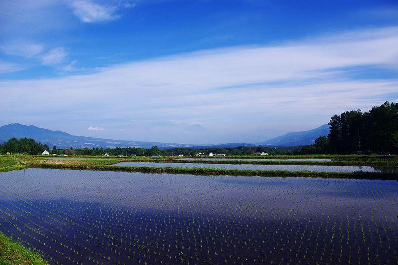 150531_富士山