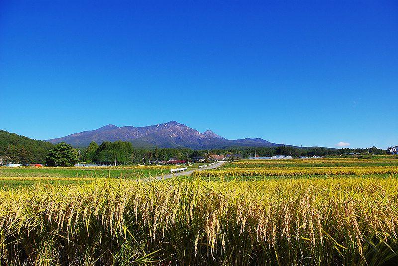151008_八ヶ岳_